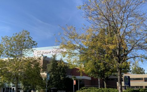 Student government proposed solar panels for Harper's campus
